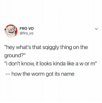 "Relatable, How, and Got: FRO vo  @fro vo  ""hey what's that sqiggly thing on the  ground?""  ""i don't know, it looks kinda like a w or m""  _ how the worm got its name 👀👀👀"