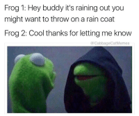 Thanks for the heads up frog boy: Frog 1: Hey buddy it's raining out you  might want to throw onarain coat  Frog 2: Cool thanks for letting me know  CoCabbageCatMemes Thanks for the heads up frog boy