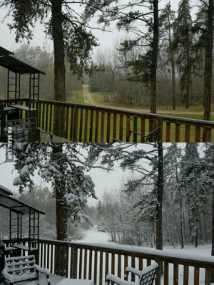 From autumn to winter in 2 hours. Alberta, Canada.: From autumn to winter in 2 hours. Alberta, Canada.