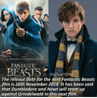 Out of 10, how much do you like Newt Scamander? ❤❤ ♔ Tag a friend who loves Harry Potter too! 🤣⚡ I know this is not a Harry Potter fact, but I just want to share it with you guys! 💜 ◇ Potterheads⚡count: 145,790: FROM  J.K.ROWLING'S WIZARDING WORED  FANTASTIC  The release date for the next Fantastic Beasts  film is 16th November 2018. It has been said  that Dumbledore and.Newt will team up  against Grindelwald in this next film. Out of 10, how much do you like Newt Scamander? ❤❤ ♔ Tag a friend who loves Harry Potter too! 🤣⚡ I know this is not a Harry Potter fact, but I just want to share it with you guys! 💜 ◇ Potterheads⚡count: 145,790