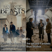 Memes, Warner Bros., and World: FROM JK. ROWLING'S  WIZARDING WORLD  ANTASTIC  BEASTS  AND WHERE  TO FIND THEM  mgglefacts  Filming has begun for the second Fantastic  Beasts film at Warner Bros Studios  Leavesden  MovieStillsDB.co qotd : favourite Fantastic Beasts character?