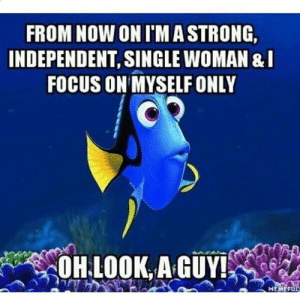 Memes, Focus, and Single: FROM NOW ON IMASTRONG,  INDEPENDENT, SINGLE WOMAN &I  FOCUS ON MYSELF ONLY  OH LOOK AGUY!  MEMEFUL