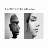 Which one do you think it is?: Frontal view? Or side view? Which one do you think it is?