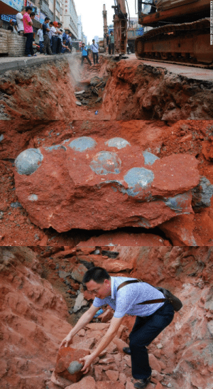 cnn.com, Dinosaur, and Frozen: frozen-void:  nowimthevillain:   sixpenceee:   Dozens of Dinosaur Eggs Discovered by Construction Workers in Chinese City Construction workers unearthed 43 fossilized dinosaur eggs during road repair work in Heyuan city in the southern Chinese province of Guangdong on Sunday. Nineteen of the eggs are completely intact, with the largest measuring as much as 13 centimeters (5 inches) in diameter. Researchers said they will continue to examine the fossils to determine which dinosaur species they belong to. (Source)   No fuck no this is basically the start of jurassic park   LET'S GET THE DEADLY PARTY STARTEEEEEEEEEEEEED