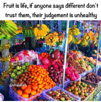 Apple, BlackBerry, and Food: Fruit is life, if anyone says different don't  trust them, their judgement is unhealthy  38-6870879.  @chakabars Thailand is fruit heaven, are you eating the fruit? Learn about what you are eating and why, Afrikans stop eating like cave people, you were never cave people... ❤️ What I eat for breakfast every morning should be healthy so I eat Fruits: Fruits DO NOT mix well with any other food group! Fruits should be eaten alone as a snack or meal on an empty stomach. Fruits (especially tropical ones) have digestive enzymes that help to clean out the residue left over from the food you've eaten the night before. Pineapple is a great fat burner and roto-rooter, scrubbing and cleansing its way through your intestinal tract. Papaya has a number of medicinal qualities and has been proven to be an effective meat tenderiser. Fruits travel through the digestive tract very quickly (within an hour) which is why it's so important not to eat them with any other food group. Fruits are made up of 4 groups: Acid fruits, Sub-Acid Fruits, Sweet Fruits & Melons. With Food Combining, you typically NEVER want to mix any of the fruits with any other food group, and each fruit group should be eaten separately from one another. HOWEVER, you can bend this rule to a degree. Acid fruits Acid Fruits have the most fiber and are rich in antioxidants. Approximate digestion time: 20 to 30 mins Blackberry Cherries (Sour) Cranberry Gooseberries Grapes (Sour) Grapefruit Kumquats Lemon Lime Loganberries Orange Pineapple Plum (Sour) Pomegranate Raspberry Sour Apple Strawberry Tangelo Tangerine Tomatoes Sub-acid fruits Apple Approximate digestion time: 30 to 40 minutes Apricot Blueberry Cherry Grapes (Not Sweet Or Sour) Kiwi Lychee Mango Nectarine Papaya Peach Pear Plum (Sweet) Sweet fruits Are more concentrated and take longer to digest. They're not the greatest of cleansers, but do provide minerals and concentrated sugars. Approximate digestion time: 40 to 60 minutes Currents Dates Figs Grapes (All Sweet Grapes Like Thompson) Papaya Persimmon Prunes Raisins Banana Acid & sub acid is ok Sub acid & sweet is ok Do not combine acid & sweet fruits. Melon should be eaten on its own... famfoods chakabars