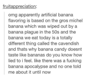 Apparently, Candy, and Fucking: fruitappreciation:  omg apparently artificial banana  flavoring is based on the gros michel  banana which was wiped out by a  banana plague in the 50s and the  banana we eat today is a totally  different thing called the cavendish  and thats why banana candy doesnt  taste like bananas do you know how  lied to i feel. like there was a fucking  banana apocalypse and no one told  me about it until now The banana apocalypseomg-humor.tumblr.com