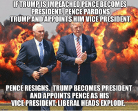 Memes, Trump, and 🤖: FTRUMPISIMPEACHED PENCE BECOMES  PRESIDENTI, PENCE PARDONS  TRUMPANDAPPOINTS HIM VICE PRESIDENT  PENCE RESIGNS. TRUMP BECOMES PRESIDENT  ANDAPPOINTS PENCE AS HIS  VICE PRESIDENT.LIBERAL HEADS EXPLODE WOAH