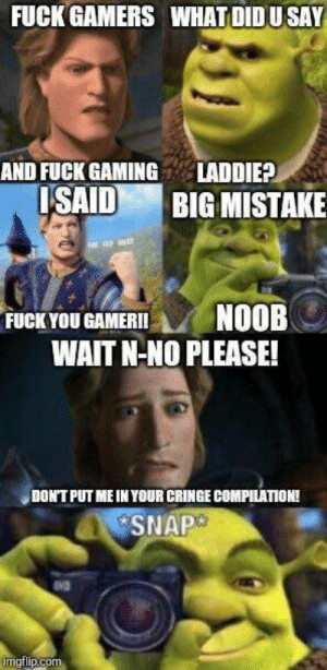 Fuck You, Reddit, and Tumblr: FUCK GAMERS WHAT DIDUSAY  AND FUCK GAMINGLADDIE?  SAID BIG MISTAKE  FUCK YOU GAMERINOOB  WAIT N-NO PLEASE!  DONT PUT ME INYOUR CRINGE COMPILATION!  SNAP  mgtlip.com cxsaltwater:found this on reddit and i can't stop thinking about it