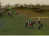 Fuck, Cow, and Fuck Off: fuck off  my cow is bigger than yours