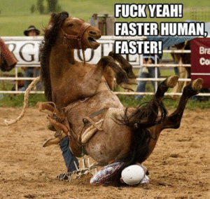 Funny, Yeah, and Fuck: FUCK YEAH!  FASTER HUMAN  FASTER! Bra  Co Found this a little too funny