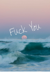 Fuck You, Tumblr, and Blog: Fuck You uprightly:  vertical/boho/personal blog