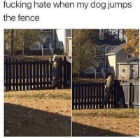 "Fucking, Memes, and Http: fucking hate when my dog jumps  the fence  il <p>See ya later.. via /r/memes <a href=""http://ift.tt/2z2hfLw"">http://ift.tt/2z2hfLw</a></p>"