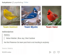 Dank, Jay, and Pokemon: fuckyahumor pepethefrog Follow  Team Valor  Team Instinct  Team Mystic  teal bloodprince  the terry:  Yellow Warbler Blue Jay IRed Cardinal  the first Pokemon Go team post that is not insulting to anybody  Source the terry  95,836 notes