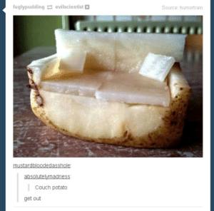 True, Couch, and Potato: fuglypudding evilscientist  Source: humortrain  mustardbloodedasshole:  absolutelymadness:  Couch potato  get out The one true couch potato!