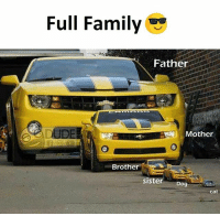 Family, Memes, and 🤖: Full Family  Father  Mother  Brother  sister  Dog  cat
