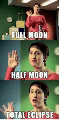 Eclipse, Moon, and Total: FULL MOON  HALF MOON  TOTAL ECLIPSE