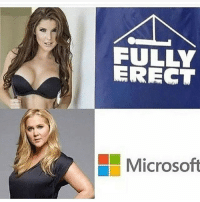 top girl is amanda cerny and yes she has a nude playboy shoot: FULLY  ERECT  Microsoft top girl is amanda cerny and yes she has a nude playboy shoot
