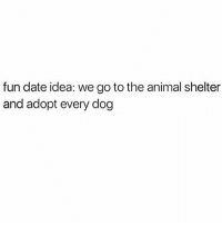 Memes, Animal Shelter, and 🤖: fun date idea: we go to the animal shelter  and adopt every dog tag your friends