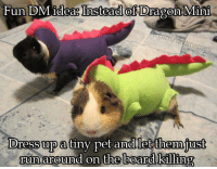 Future, Run, and Dress: Fun DM ideaI  Instead of D  ragon Mini  Dress up a  tiny pet and let themjust  run around on the boandl killing  on the board klllin A GLIMPSE INTO THE FUTURE  -Law
