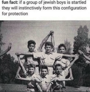 +100 armor by RealTehzerr MORE MEMES: fun fact: if a group of jewish boys is startled  they will instinctively form this configuration  for protection +100 armor by RealTehzerr MORE MEMES