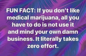Medical Marijuana: FUN FACT: If you don't like  medical marijuana, all you  have to do is not use it  and mind your own damn  business. It literally takes  zero effort.