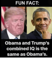 Obama, Fun, and Fun Fact: FUN FACT:  Obama and Trump's  combined IQ is the  same as Obama's.