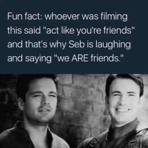 """jurassicbarnes: it's so nice to know what he said. my heart's going all ✨😭💕: Fun fact: whoever was filming  this said """"act like you're friends""""  and that's why Seb is laughing  and saying """"we ARE friends."""" jurassicbarnes: it's so nice to know what he said. my heart's going all ✨😭💕"""