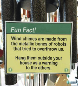 Bones, House, and Fun: Fun Fact!  Wind chimes are made from  the metallic bones of robots  that tried to overthrow us.  Hang them outside your  house as a warning  to the others.