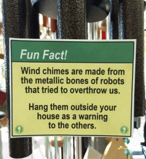 Bones, Memes, and House: Fun Fact!  Wind chimes are made from  the metallic bones of robots  that tried to overthrow us.  Hang them outside your  house as a warning  to the others.