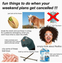 haha fuck my life lol ::--))): fun things to do when your  weekend plans get cancelled !!!  just look at this horse  dont text them  break the shells and put these in a bag  for a pistachio emergency when you  won t have time to crack the shells  make a kickass sock  puppet that wonrt cancel  plans at the last minute  simply think about Redfoo  clip some of these  bad boys  level up and try clipping these!  train your body to  tolerate dairy haha fuck my life lol ::--)))