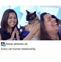 Funny, Pictures, and Trendy: funny-pictures-uk  Every cat human relationship. I just inhaled a large fry
