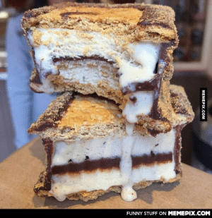 Funny, Omg, and Tumblr: FUNNY STUFF ON MEMEPIX.COM  МЕМЕРIХ.Cом S'mores Ice Cream Sammichomg-humor.tumblr.com