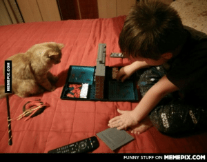 Caught my brother playing battleships with our cat…omg-humor.tumblr.com: FUNNY STUFF ON MEMEPIX.COM  MEMEPIX.COM  LLLL  WANT Caught my brother playing battleships with our cat…omg-humor.tumblr.com