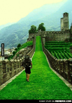 Temple Run in real life!omg-humor.tumblr.com: FUNNY STUFF ON MEMEPIX.COM  MEMEPIX.COM Temple Run in real life!omg-humor.tumblr.com