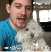 Thanks @patrickbarnesvine and Quincy for this cute 9GAGFunOff shout out! Send your videos to the link in bio to get 💰 9gag: FUNOFF 9GAG  @patrickbarnesvine  Right now 9GAG is having a competition Thanks @patrickbarnesvine and Quincy for this cute 9GAGFunOff shout out! Send your videos to the link in bio to get 💰 9gag