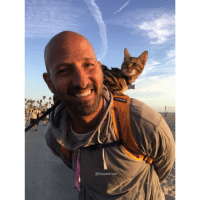 9gag, Animals, and Cats: @funpawcare Just a guy hanging with his baby at the beach. Pussy loves me 😻🔥@funpawcare Who else brings their cat to the beach? instagram instadaily instagood igdaily picoftheday pictureoftheday dogdaycare doggiedaycare doghotel dogboarding petstagram adorable funnycat catsrule cat cats meow kitten kitty Catsofinstagram gato gatos coolcat fatcat bengalcat bengalcat fatcatsofinstagram catpic catpics catpictures @9gag @barked @buzzfeed @buzzfeedanimals @ladbible @unilad @theellenshow @cats_of_instagram @barstoolsports @instagram @animals.co @thedodo @boopmynose @dogsofinstaworld @pups @pawz @puppystagrams @animal_unity @animalove.co @cutepetclub