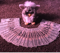 Money, Target, and Tumblr: furbykisses:This is the money furby, reblog for good luck in wealth and in health