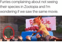 #Furries #zootopia: Furries complaining about not seeing  their species in Zootopia and I'm  wondering if we saw the same movie.  icle #Furries #zootopia