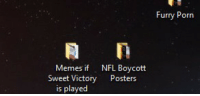 Lets hit it: Furry Porn  Memes if  NFL Bovcott  Sweet Victory Posters  is played Lets hit it