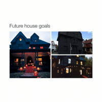 Future, Goals, and Goal: Future house goals where's hime