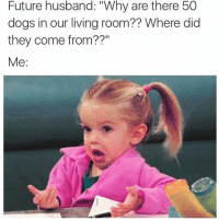"""Dogs, Funny, and Future: Future husband: """"Why are there 50  dogs in our living room?? Where did  they come from??"""" Follow @fuckboyproblem.s if your not wearing socks right now 🧦"""