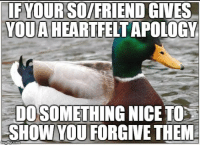 "Advice, Tumblr, and Animal: FYOUR SO/FRIEND GIVES  YOUA HEARTFELT APOLOGY  DOSOMETHING NICE TO  SHOW YOU FORGIVE THEM <p><a href=""http://advice-animal.tumblr.com/post/168014444023/a-little-bit-will-go-a-long-way-and-will-make-it"" class=""tumblr_blog"">advice-animal</a>:</p>  <blockquote><p>A little bit will go a long way, and will make it easier the next time YOU need to apologize.</p></blockquote>"