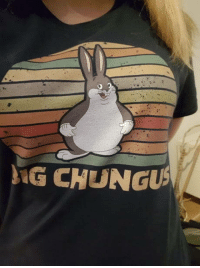 Club, Memes, and Tumblr: G CHUNGU laughoutloud-club:  My brother and me have been sending each other big chungus memes non stop so today he suprised me with this