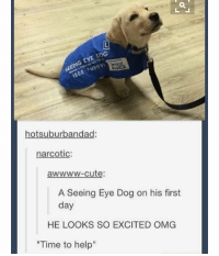 "- follow my personal @fml_jade • • { tumblr tumblrpost tumblrtextpost funny tumblrfunny funnytumblr comedy weird memes relatable af fandoms instagood follow cute love bill_wi_the: G EYE DOG  otsuburbandad  narcotic  awwww-cute:  A Seeing Eye Dog on his first  day  HE LOOKS SO EXCITED OMG  ""Time to help"" - follow my personal @fml_jade • • { tumblr tumblrpost tumblrtextpost funny tumblrfunny funnytumblr comedy weird memes relatable af fandoms instagood follow cute love bill_wi_the"