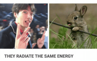 Energy, Bts, and They: g Hit  THEY RADIATE THE SAME ENERGY Y es #jungkook #bts
