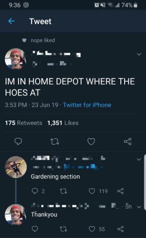 Funny, Hoes, and Iphone: G lll 74%  9:36 O  Tweet  nope liked  IM IN HOME DEPOT WHERE THE  HOES AT  3:53 PM 23 Jun 19 Twitter for iPhone  175 Retweets 1,351 Likes  Gardening section  2  119  5h  Thankyou  55 Finally, a helpful post! https://t.co/TuOmtx8ffc