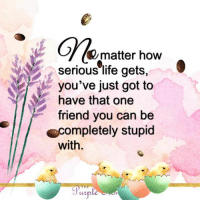 Life, Memes, and 🤖: G%matter how  serious life gets,  you've just got to  have that one  friend you can be  completely stupid  with.  TH  wple