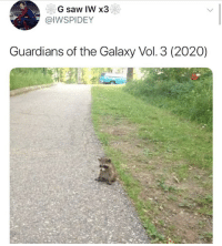 Memes, Saw, and Guardians of the Galaxy: G saw IW x3  @IWSPIDEY  Guardians of the Galaxy Vol. 3 (2020) Damn