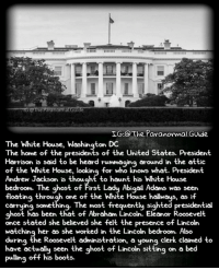 Abraham Lincoln, Creepy, and Love: G:@ The Paranormal Guide  IG.@ The Paranormal.Guide  The White House, Washington DC  The home of the presidents of the United States. President  Harrison is said to be heard rummaging around in the attic  of the White House, looking for who knows what. President  Andrew Jackson is thouaht to haunt his White House  bedroom. The ghost of First Lady Abigail Adams was seen  floating through one of the White House hallways, as if  carrying something. The most frequently sighted presidential  ahost has been that of Abraham Lincoln. Eleanor Roosevelt  once stated she believed she felt the presence of Lincoln  watching her as she worked in the Lincoln be  during the Roosevelt administration, a young clerk claimed to  have actually seen the ahost of Lincoln sitting on a bed  droom. Also  ave actualy seen the ghost ot Lincoln sitting on a be  puling off his boots. Follow @the.paranormal.guide for more . . . . . . . . . . scary creepy gore horrormovie blood horrorfan love horrorjunkie ahs twd horror supernatural horroraddict makeup murder spooky terror creepypasta evil metal bloody follow paranormal ghost haunted me serialkiller like4like deepweb