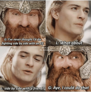 Elf, The Lord of the Rings, and Lord of the Rings: G: ve never thought l'd die  fighting side by side with an Elf  lord of  L: What about  the_lockscreens  G: Aye, I could do that  L: side by side with a friend? The Lord of the Rings Trilogy